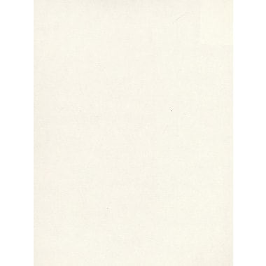 Daler-Rowney Canford Cut Paper And Card Sheets Paper Snow White 8 1/2 In. X 11 In. [Pack Of 20] (20PK-402260068)