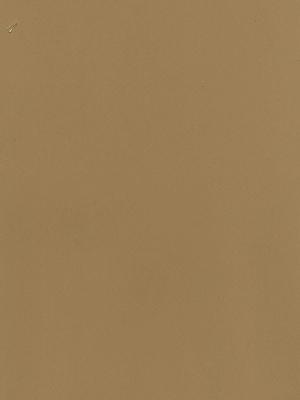 Darice Craft Foam 9 In. X 12 In. Sheet Tan [Pack Of 40] (40PK-1189-03)