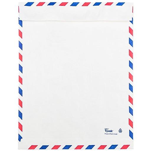 Jam paper tyvek envelopes 9 x 12 open end white airmail 1000 httpsstaples 3ps7is malvernweather Images