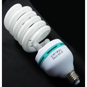 Zuma Light Bulb 85W 110V CFL Light Bulb (Z-CFL85)