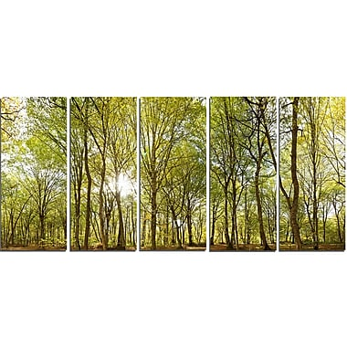 DesignArt Metal 'Green Forest Panoramic View' Photographic Print