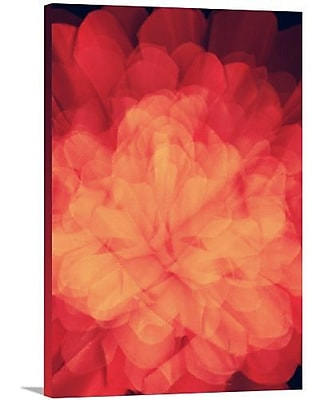 Artzee Designs 'Modern Flower' Graphic Art on Wrapped Canvas; 20'' H x 12'' W x 0.75'' D