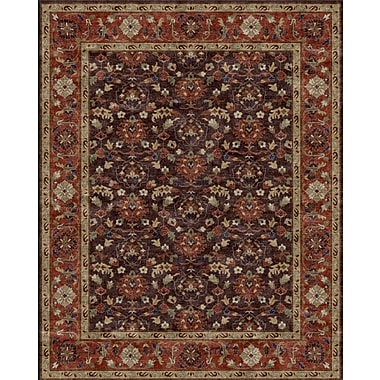 Due Process Stable Trading Co Meshed Hand-Tufted Chocolate Area Rug; Rectangle 8'6'' x 11'6''