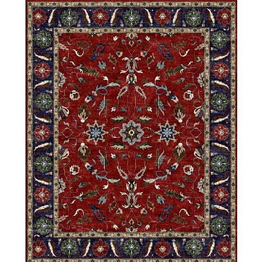 Due Process Stable Trading Co Agra Hand-Tufted Burgundy/Blue Area Rug; Rectangle 8'6'' x 11'6''