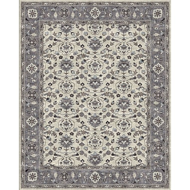 Due Process Stable Trading Co Meshed Hand-Tufted Sand/Pearl Area Rug; Rectangle 3'6'' x 5'6''
