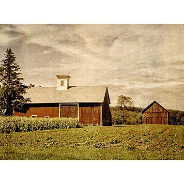 Graffitee Studios Red Barns of Glastonbury' Photographic Print on Wrapped Canvas