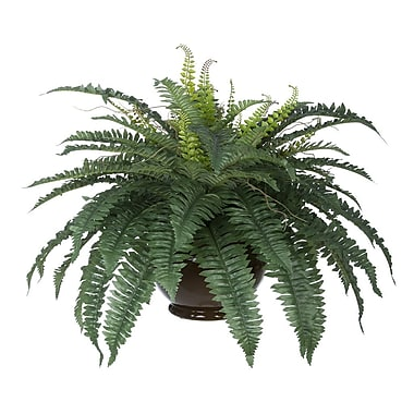 House of Silk Flowers Artificial Fern Desk Top Plant; Brown