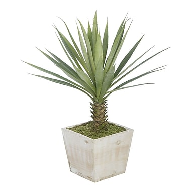 House of Silk Flowers Artificial Yucca Desk Top Plant in Planter; White