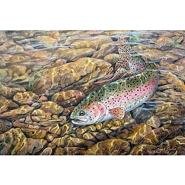 WGI GALLERY 'Rainbow Trout' Painting Print on Wood; 16'' H x 24'' W x 0.5'' D