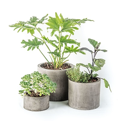 My Spirit Garden Mateo 3-Piece Composite Pot Planter Set