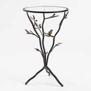 InnerSpace Luxury Products Glass Bird Table w/ Removable Glass Top