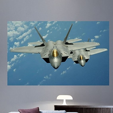 Wallhogs Lee F-22 Wall Mural; 22.5'' H x 36'' W