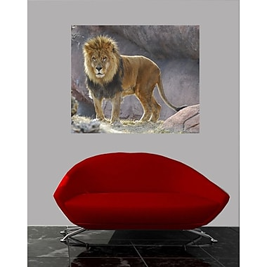 Wallhogs King of The Jungle Wall Mural; 30'' H x 36'' W