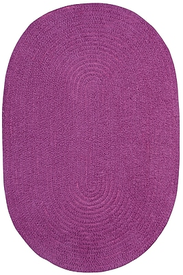 Capel Custom Classics Braided Blueberry Area Rug; Oval 3' x 5'