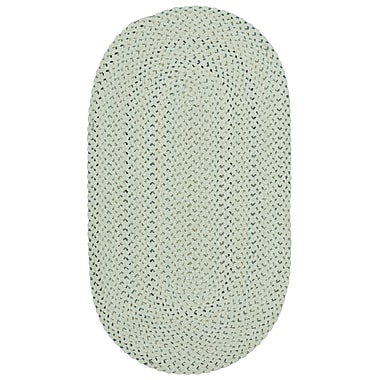 Capel Vivid Braided Eggshell Area Rug; Oval 7' x 9'