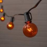 PennDistributing 10 Light Transparent Globe Set