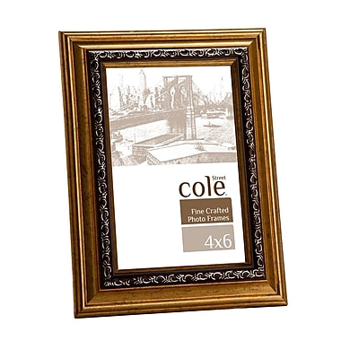 Philip Whitney Bevel Leaf Picture Frame; 4'' x 6''