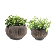 Keter Cozie 2-Piece Plastic Pot Planter Set; Harvest Brown
