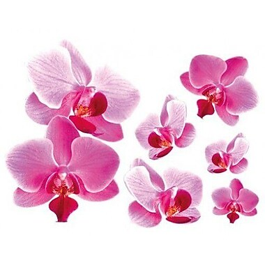 Style and Apply Pink Orchid Wall Decal; 19'' H x 24'' W
