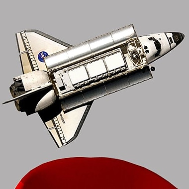 Wallhogs Space Shuttle Endeavor Cutout Wall Decal; 30'' H x 48'' W