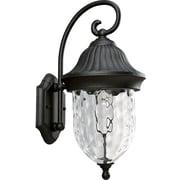 Progress Lighting Coventry 1-Light Outdoor Wall lantern; Black