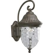 Progress Lighting Coventry 1-Light Outdoor Wall lantern; Fieldstone