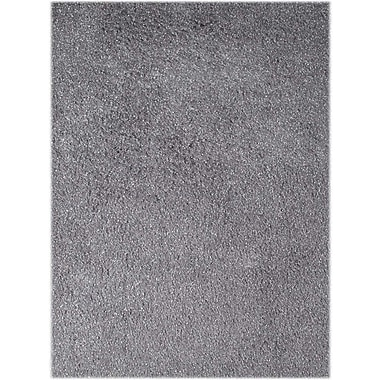 AMER Rugs Peacock Silver Area Rug; Rectangle 3'6'' x 5'6''