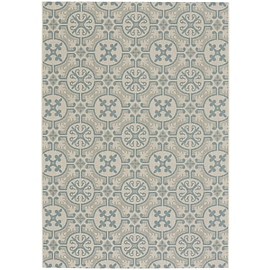 Capel Elsinore Blue Indoor/Outdoor Area Rug; 3'11'' x 5'6''