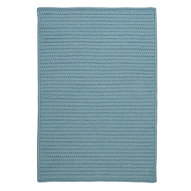 Colonial Mills Simply Home Solid Blue Indoor/Outdoor Area Rug; Rectangle 4' x 6'