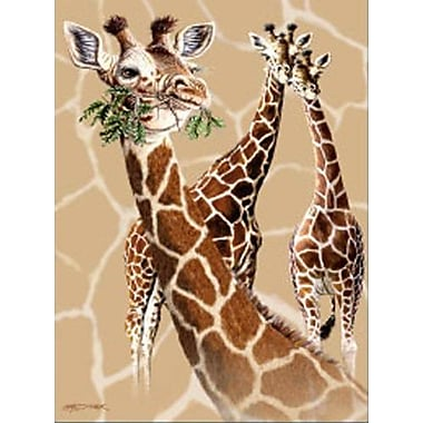Ben and Jonah Royal Plush Extra Heavy Queen Size Giraffes on the Savannah Blanket