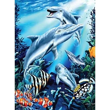 Ben and Jonah Royal Plush Extra Heavy Queen Size Dolphins Blanket