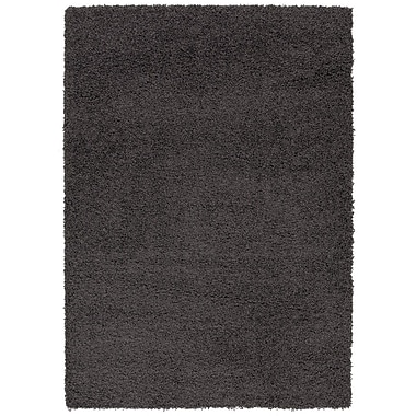 Berrnour Home Charcoal Gray Area Rug; 5' x 7'