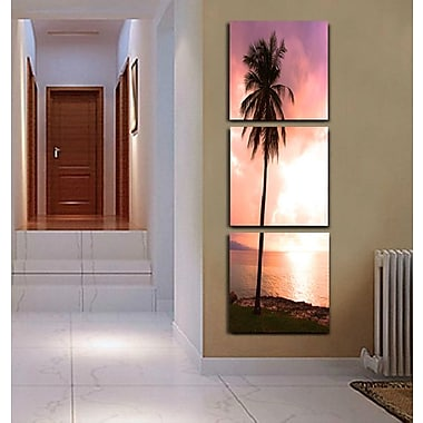 3 Panel Photo Palm Sunshine 3 Piece Photographic Print on Canvas Set; 84'' H x 28'' W x 1'' D