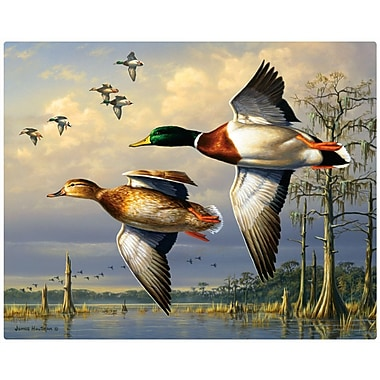 Magic Slice Cypress Swamp Mallards by James Hautman Non Slip Flexible Cutting Board