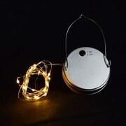 ThePaperLanternStore Moon Bright LED Mason Jar Light; Warm White