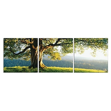 3PanelPhoto O'er the Ridge 3 Piece Photographic Print on Canvas Set; 24'' H x 72'' W x 1'' D