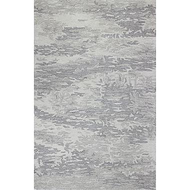 Bashian Rugs Norwalk Hand-Tufted Grey Area Rug; 3'6'' x 5'6''