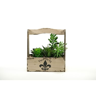 D & W Silks Mixed Succulents Rectangle Fleur De Lis Floral Arrangements in Planter w/ Handle