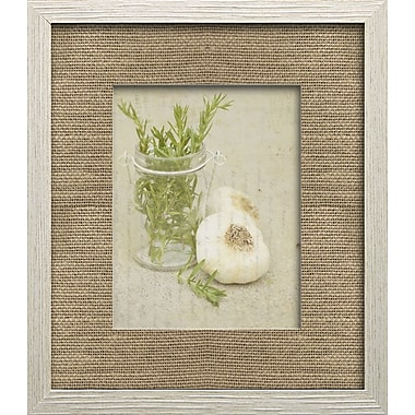 Star Creations Herb Life II by Irena Orlov Framed Photographic Print