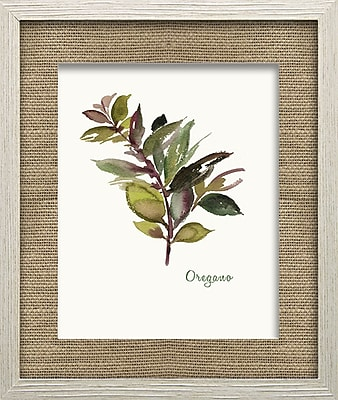 Star Creations Oregano by Asia Jensen Framed Painting Print