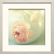 Star Creations Vintage Peony II by Sarah Gadner Framed Photographic Print