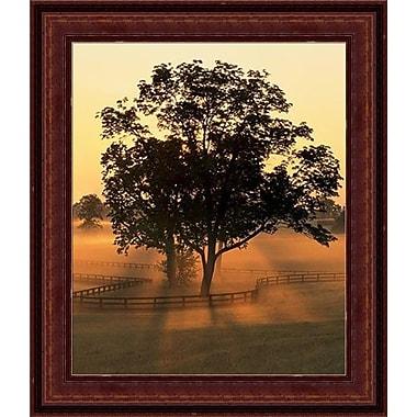 HadleyHouseCo 'Morning Splendor' by Adam Jones Framed Photographic Print; 20'' H x 24'' W x 1.5'' D