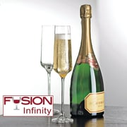 Wine Enthusiast 7340404 Fusion Infinity Champagne Flutes, 4 Pk