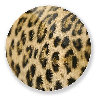 Two Palms Art Bazaar 'Supple Leopard' Photographic Print; 15'' H x 15'' W x 1'' D