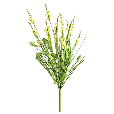 SheasWildflowers Steeple Spike; Yellow
