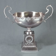AA Importing Bowl w/ Handle; Silver