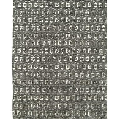 Wildon Home Hand-Woven Gray Area Rug; 2' x 3'