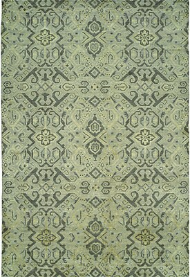 Wildon Home Hand-Woven Green Area Rug; 2' x 3'