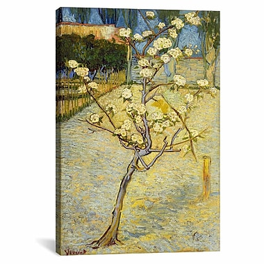 iCanvas ''Small Pear Tree'' by Vincent Van Gogh Painting Print on Canvas; 40'' H x 26'' W x 0.75'' D