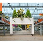 VitaGardens 4 ft. x 2 ft. Plastic Raised Garden Planter